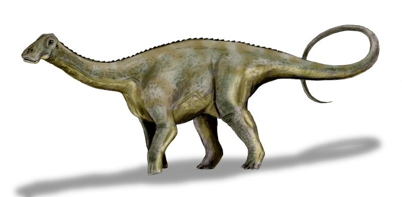 Learn about Pakistan's Dinosaurs!