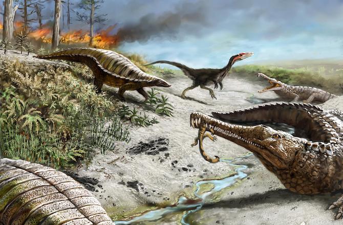 DinoFinder!