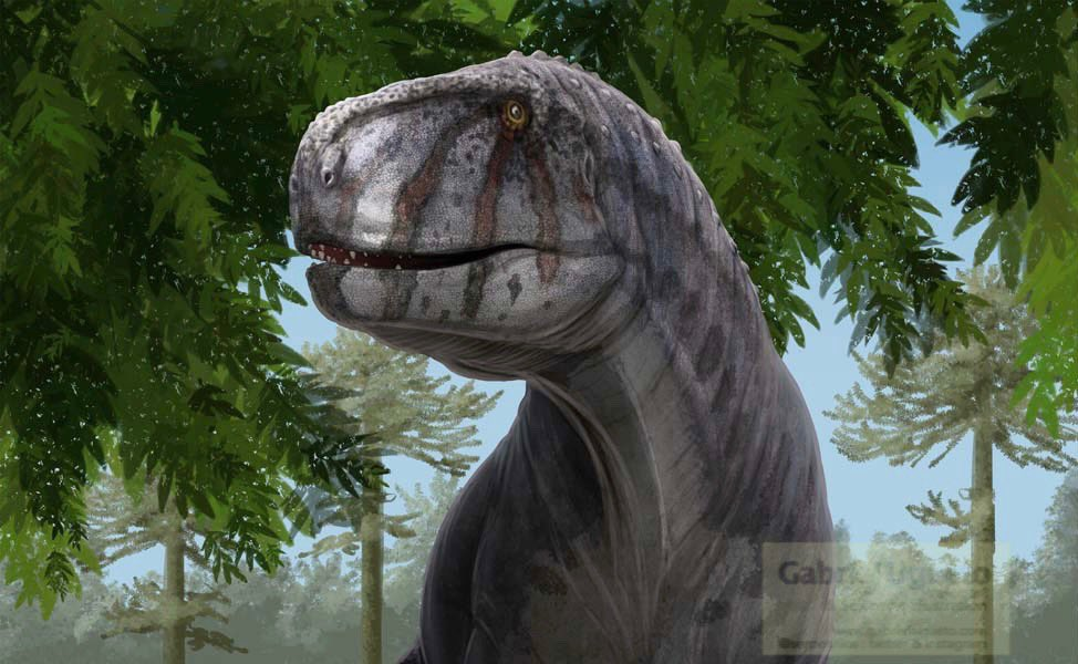 Abelisaurid Discovery in Argentina!